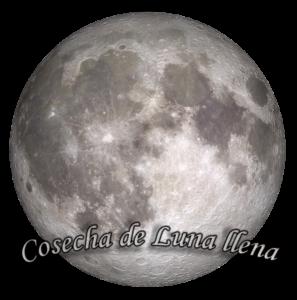 Cosecha de Luna llena